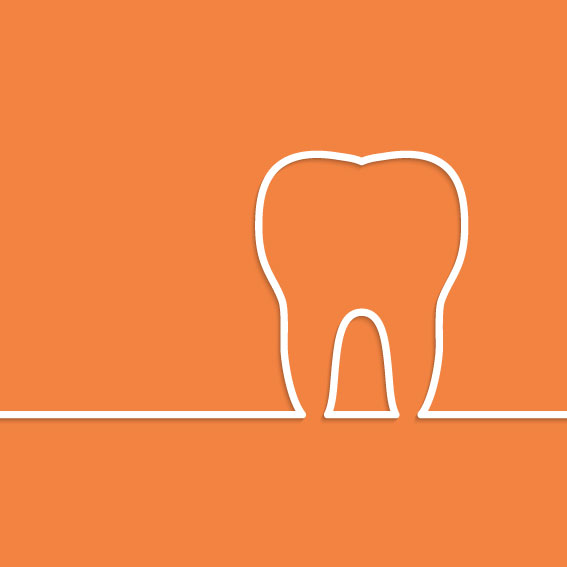 anatomia_dientes.jpg